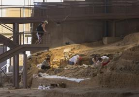 Excavación III Campus-1.jpg