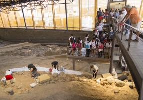 Excavación III Campus-2.jpg